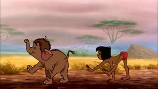 mowgli01.jpg